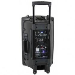 IBIZA PORT12VHF-BT- Enceinte Sono Portable 30cm 2* Micro